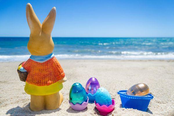 Easter Offer 2021